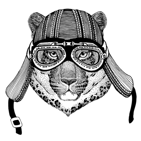 Wild cat Leopard Cat-o-mountain Panther Hand drawn image of animal wearing motorcycle helmet for t-shirt, tattoo, emblem, badge, logo, patch Stock Photo