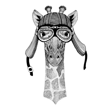 Camelopard, giraffe Hand drawn image of animal wearing motorcycle helmet for t-shirt, tattoo, emblem, badge, logo, patch