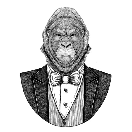 Gorilla, monkey, ape Frightful animal Hipster animal Hand drawn illustration for tattoo, emblem, badge, patch, t-shirt