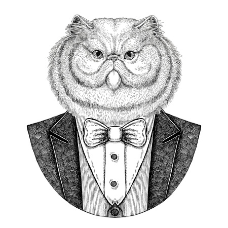 Portrait of fluffy persian cat Hipster animal Hand drawn illustration for tattoo, emblem, badge, patch, t-shirt
