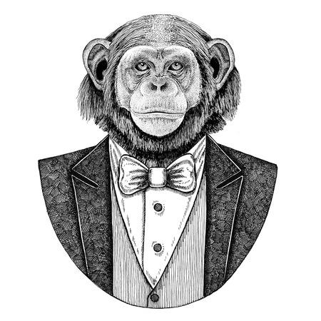 Chimpanzee Monkey Hipster animal Hand drawn illustration for tattoo, emblem, badge, logo, patch, t-shirt Foto de archivo