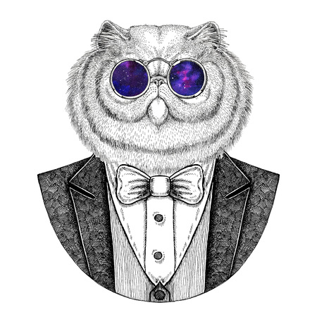 Portrait of fluffy persian cat Hipster animal Hand drawn illustration for tattoo, emblem, badge, logo, patch, t-shirt Stock Photo
