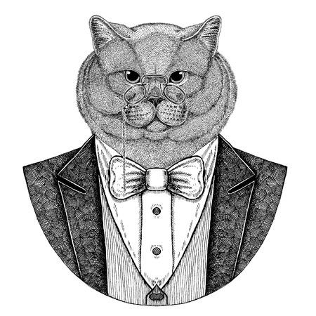 Brithish 고귀한 고양이 Hipster 동물 손으로 그린 이미지 문신, 엠 블 럼, 배지, 로고, 패치, t- 셔츠