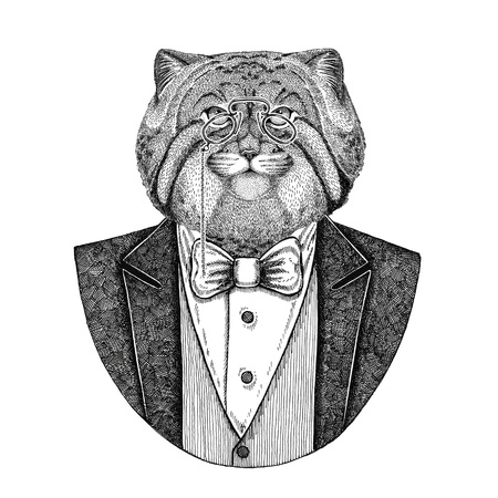 Wild cat Manul Hipster animal Hand drawn illustration for tattoo, emblem, badge, logo, patch, t-shirt
