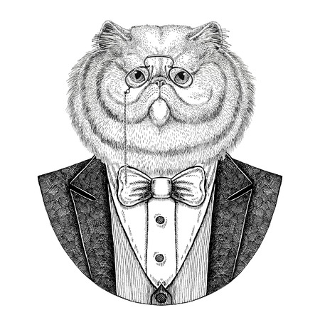 Portrait of fluffy persian cat Hipster animal Hand drawn illustration
