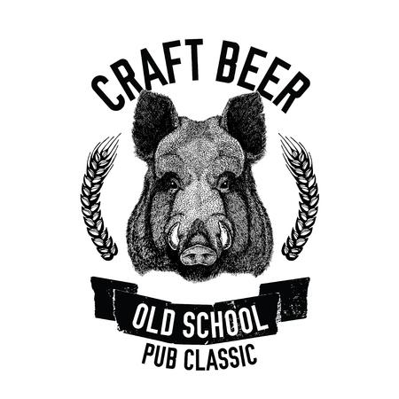 Emblème de bière tiré à la main avec porc sauvage, sanglier, cochon Modèle pour badge, logo, couverture de menu, patch Banque d'images - 76712210