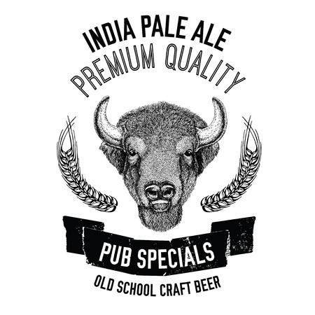 cereal bar: Hand drawn beer emblem with buffalo, ox, bull Vector image