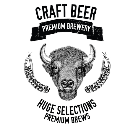 Hand drawn beer emblem with buffalo, ox, bull Vector image