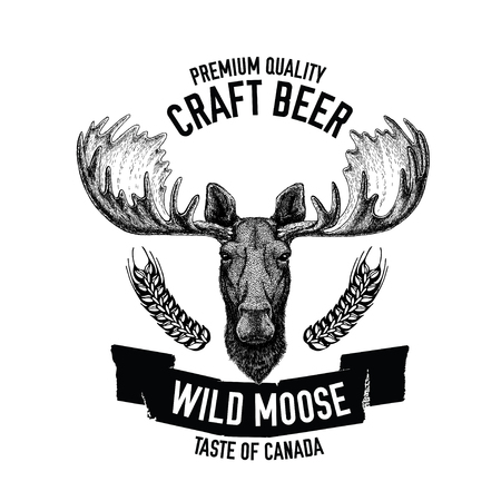 Hand drawn beer emblem with wild moose Ilustrace