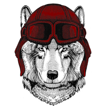 Wolf Dog Aviator, biker, motorcycle Hand drawn illustration for tattoo, emblem, badge, logo, patch