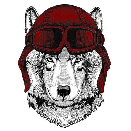 Wolf Dog Aviator, biker, motorcycle Hand drawn illustration for tattoo, emblem, badge, logo, patch