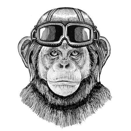 Chimpanzee Monkey Aviator, biker, motorcycle Hand drawn illustration for tattoo, emblem, badge, logo, patch