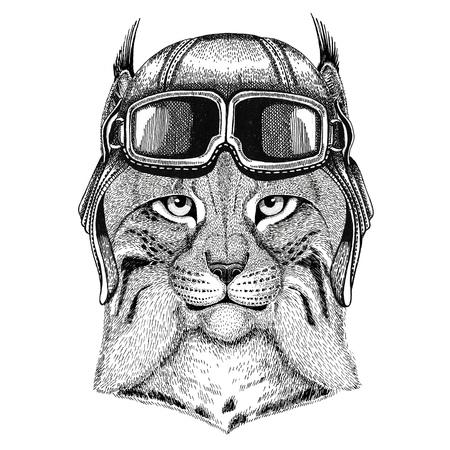 the lynx: Wild cat Lynx Bobcat Trot wearing leather helmet Aviator, biker, motorcycle Hand drawn illustration for tattoo, emblem, badge,  patch
