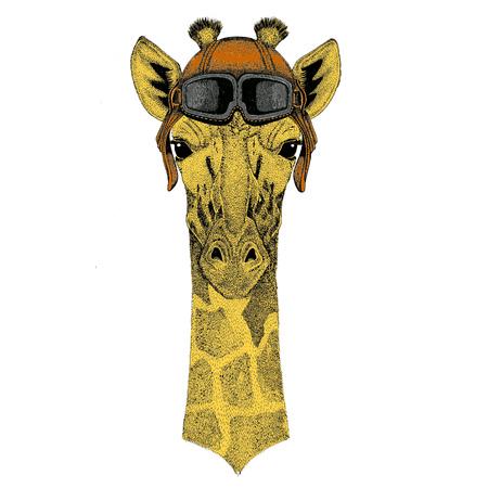 Camelopard, giraf Aviator, fietser, motorfiets Hand getekende illustratie voor tattoo, embleem, badge, logo, patch