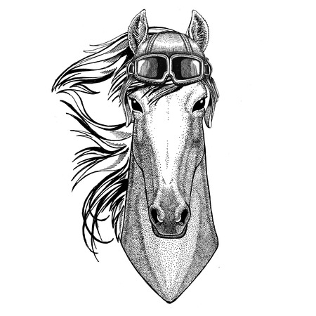 Horse, hoss, knight, steed, courser wearing leather helmet Aviator, biker, motorcycle Hand drawn illustration for tattoo, emblem, badge, logo, patch Stock Photo