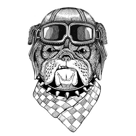 Bulldog wearing leather helmet Aviator, biker, motorcycle Hand drawn illustration for tattoo, emblem, badge,  , patch