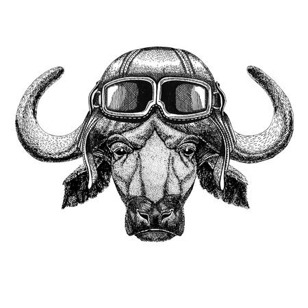 Buffalo, bull, ox wearing leather helmet Aviator, biker, motorcycle Hand drawn illustration for tattoo, emblem, badge, logo, patch Stock Photo