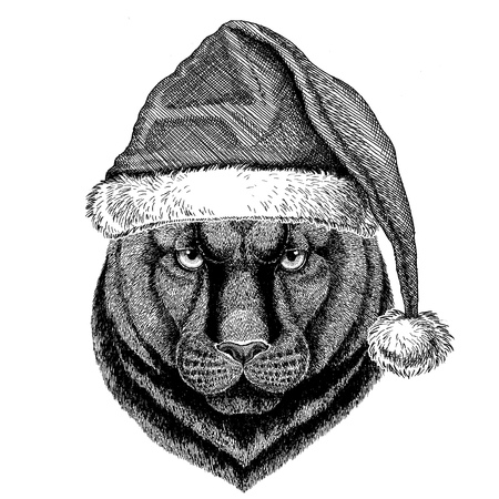 Panther Puma Cougar Wild cat wearing christmas hat New year eve Merry christmas and happy new year Zoo life Holidays celebration Hand drawn image Banco de Imagens - 79664446