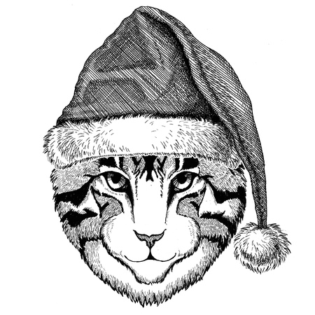 Image of domestic cat wearing christmas hat New year eve Merry christmas and happy new year Zoo life Holidays celebration Santa Claus hat Stock Photo