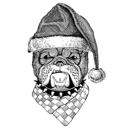 Bulldog wearing christmas hat New year eve Merry christmas and happy new year Zoo life Holidays celebration Santa Claus hat