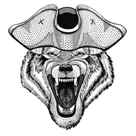Wolf Dog Wild animal wearing pirate hat Cocked hat, tricorn Sailor, seaman, mariner, or seafarer