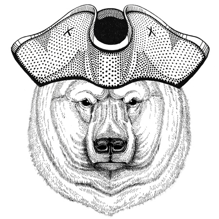 Polar bear wearing pirate hat Cocked hat, tricorn Sailor, seaman, mariner, or seafarer