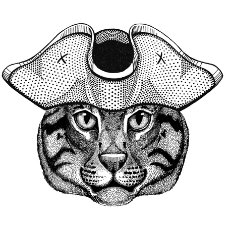 Wild cat Fishing cat wearing pirate hat Cocked hat, tricorn Sailor, seaman, mariner, or seafarer