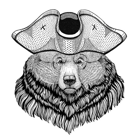 Grizzly bear Big wild bear wearing pirate hat Cocked hat, tricorn Sailor, seaman, mariner, or seafarer