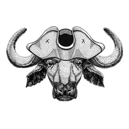 Buffalo, bull, ox wearing pirate hat Cocked hat, tricorn Sailor, seaman, mariner, or seafarer