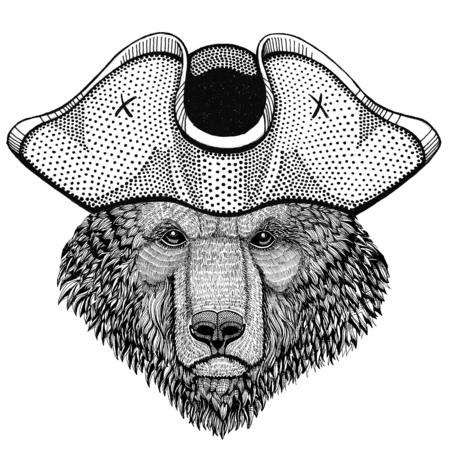 Brown bear Russian bear wearing pirate hat Cocked hat, tricorn Sailor, seaman, mariner, or seafarer Reklamní fotografie