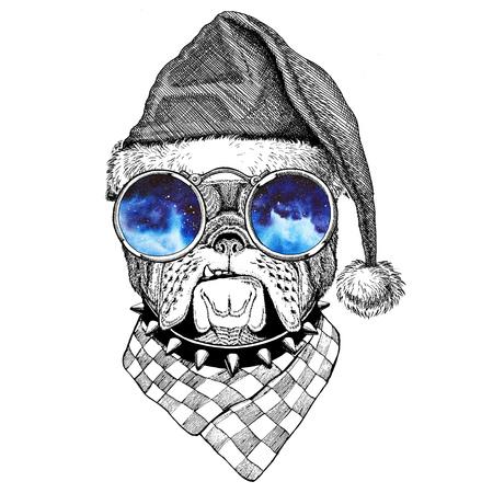 Bulldog wearing christmas hat New year eve Merry christmas and happy new year Zoo life Holidays celebration Santa Claus hat