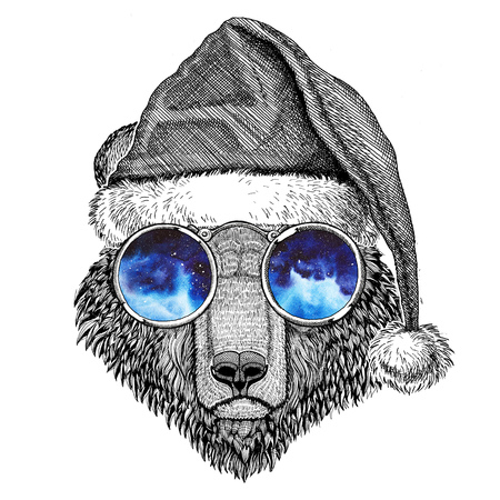 Brown bear Russian bear wearing christmas hat New year eve Merry christmas and happy new year Zoo life Holidays celebration Santa Claus hat Stock Photo