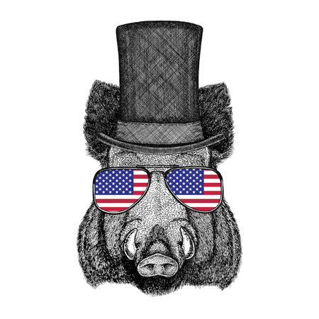 Aper, boar, hog, hog, wild boar wearing cylinder top hat and glasses with usa flag United states of America flag Stock Photo