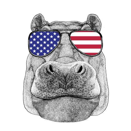 Animal sauvage portant des lunettes avec drapeau américain Drapeau des États-Unis d'Amérique Zoo animal Banque d'images - 80229829