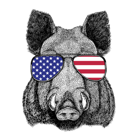 Wild animal wearing glasses with USA flag United states of America flag Zoo animal Stock Photo - 80229813