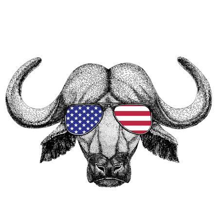 Wild animal wearing glasses with USA flag United states of America flag Zoo animal