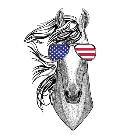 Animal salvaje llevaba gafas con EE.UU. bandera Estados Unidos de América bandera Zoo animal Foto de archivo - 80231677