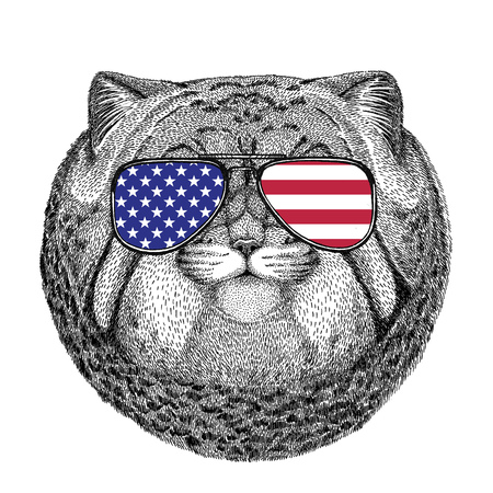 Wild animal wearing glasses with USA flag United states of America flag Zoo animal