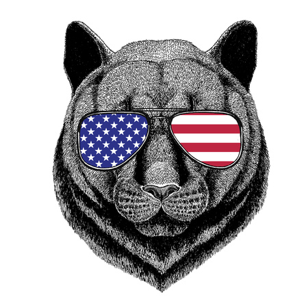 fang: Wild animal wearing glasses with USA flag United states of America flag Zoo animal
