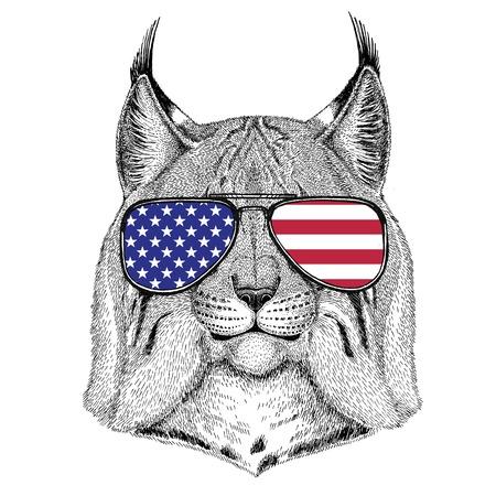 Gatto selvatico che indossa gli occhiali con USA bandiere degli Stati Uniti dell & # 39 ; America zoo zoo animale Archivio Fotografico - 80228095