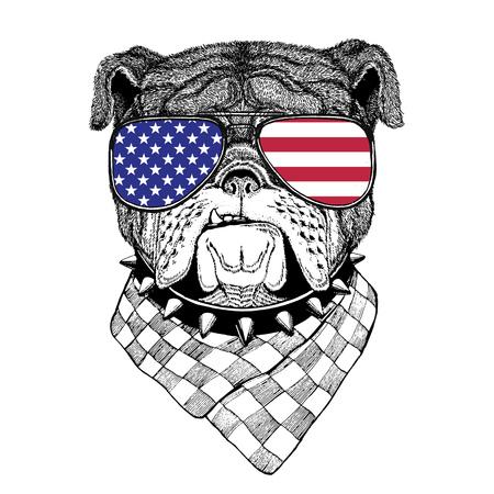 眼鏡をかけてアメリカ国旗アメリカ合衆国フラグ動物園の動物と野生動物 写真素材