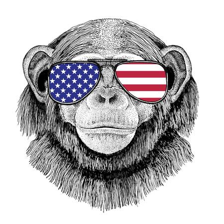 Wild dier draagt ??een bril met USA vlag Verenigde Staten van Amerika vlag Dierentuin dier