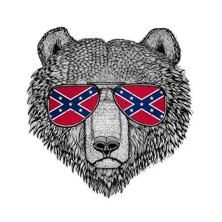 Brown bear Russian bear wearing glasses with National flag of the Confederate States of America Usa flag glasses Wild animal for t-shirt, poster, badge, banner, emblem, logo Stock Photo