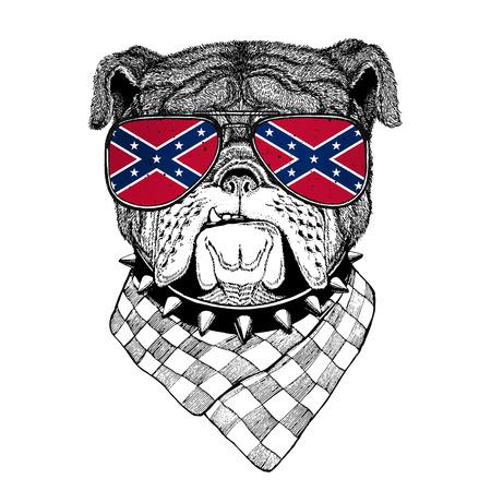 Bulldog llevaba gafas con la bandera nacional de los Estados Confederados de Estados Unidos Usa gafas de la bandera Animal salvaje para la camiseta, cartel, insignia, bandera, emblema, logotipo Foto de archivo