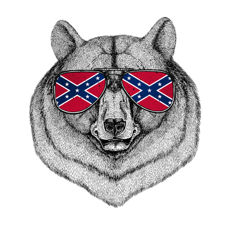 Black bear American bear wearing glasses with National flag of the Confederate States of America Usa flag glasses Wild animal for t-shirt, poster, badge, banner, emblem, logo