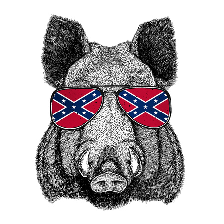 Aper, boar, hog, hog, wild boar wearing glasses with National flag of the Confederate States of America Usa flag glasses Wild animal for t-shirt, poster, badge, banner, emblem,
