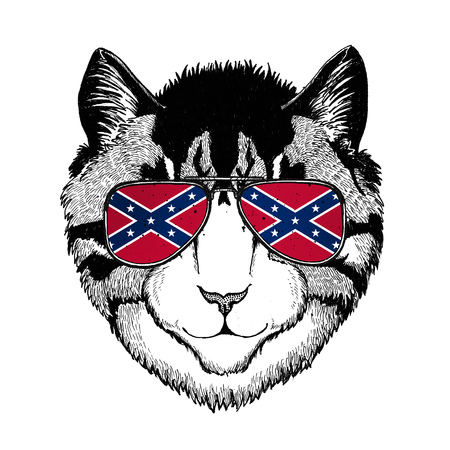 Image of domestic cat wearing glasses with National flag of the Confederate States of America Usa flag glasses Wild animal for t-shirt, poster, badge, banner, emblem, logo