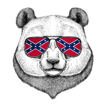 Panda bear, bamboo bear wearing glasses with National flag of the Confederate States of America Usa flag glasses Wild animal for t-shirt, poster, badge, banner, emblem,