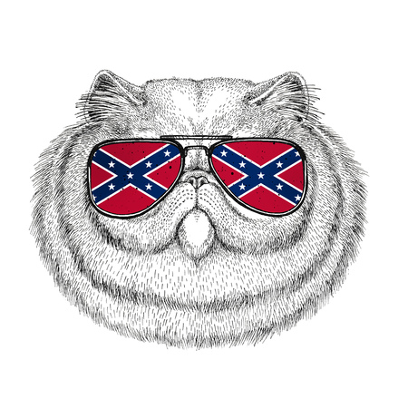 Portrait of fluffy persian cat wearing glasses with National flag of the Confederate States of America Usa flag glasses Wild animal for t-shirt, poster, badge, banner, emblem, logo