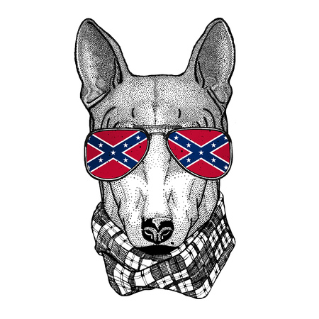 DOG for t-shirt design wearing glasses with National flag of the Confederate States of America Usa flag glasses Wild animal for t-shirt, poster, badge, banner, emblem,
